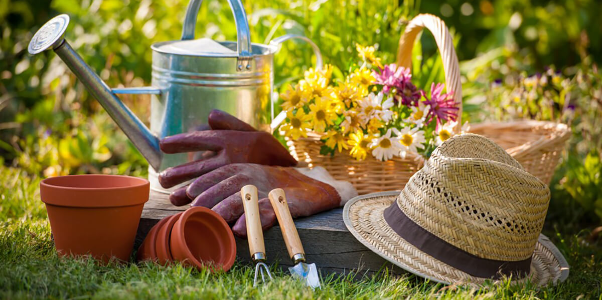 Tips to Avoid Aches and Pains While Gardening